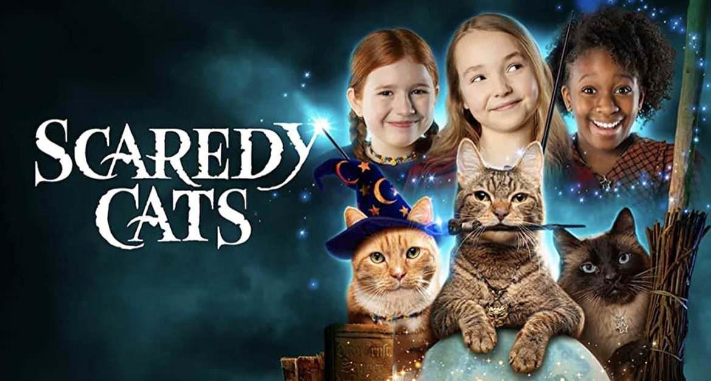 【影集】《膽小貓》分集劇情、演員角色:魔法的好壞在於施放者的選擇